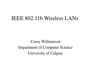 IEEE 802.11b Wireless LANs