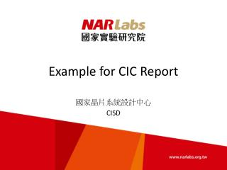 Example for CIC Report
