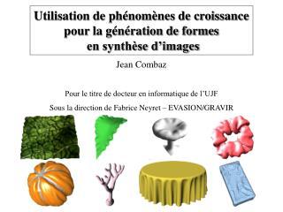 Utilisation de phénomènes de croissance pour la génération de formes  en synthèse d'images