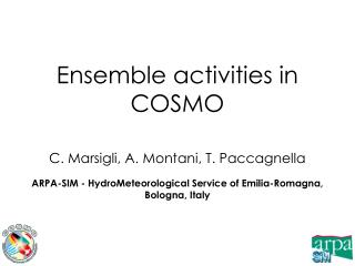 Ensemble activities in COSMO
