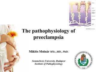 Τhe pathophysiology of preeclampsia