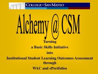 Turning  a Basic Skills Initiative  into