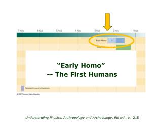 Understanding Physical Anthropology and Archaeology, 9th ed ., p. 215