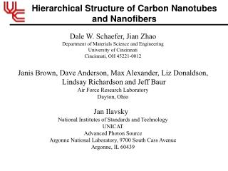 Hierarchical Structure of Carbon Nanotubes and Nanofibers