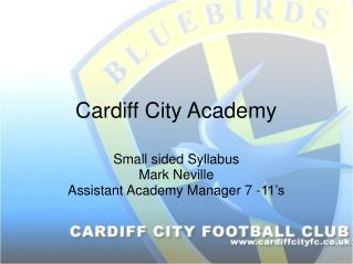Cardiff City Academy