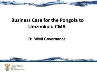 Business Case for the Pongola to  Umzimkulu  CMA D:  WMI Governance