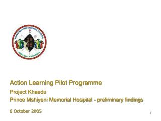 Action Learning Pilot Programme
