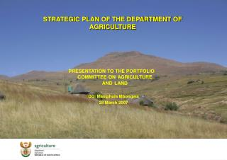 STRATEGIC PLAN OF THE DEPARTMENT OF AGRICULTURE