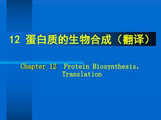 12  蛋白质的生物合成(翻译) Chapter 12   Protein Biosynthesis , Translation