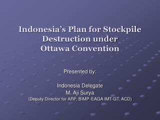 Indonesia's Plan for Stockpile Destruction under  Ottawa Convention