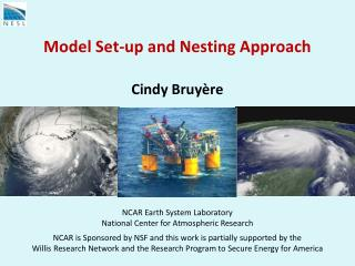 Model Set-up and Nesting Approach