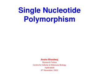 Single Nucleotide Polymorphism