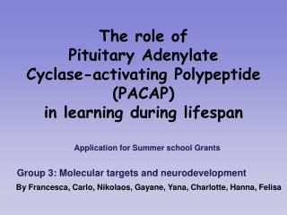 The role of  Pituitary Adenylate  Cyclase-activating Polypeptide (PACAP)