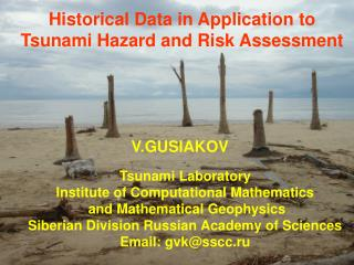 Historical Data in Application to Tsunami Hazard and Risk Assessment