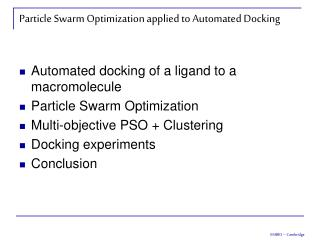 Particle Swarm Optimization applied to Automated Docking