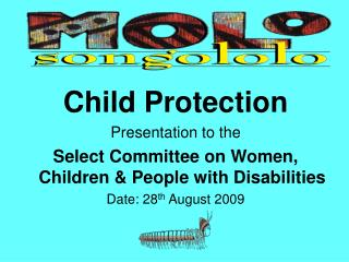 Child Protection Presentation to the