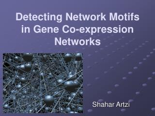 Detecting Network Motifs in Gene Co-expression Networks