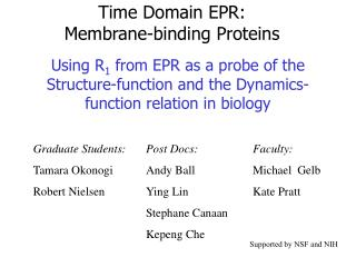 Time Domain EPR:  Membrane-binding Proteins