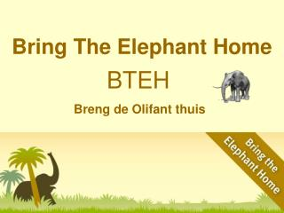 Bring The Elephant Home
