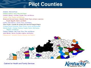 Pilot Counties