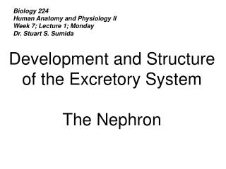 Biology 224 Human Anatomy and Physiology II Week 7; Lecture 1; Monday Dr. Stuart S. Sumida