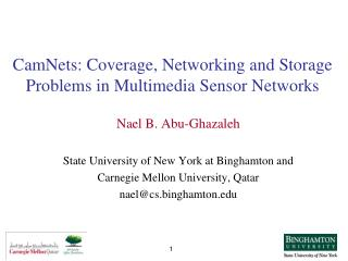 CamNets: Coverage, Networking and Storage Problems in Multimedia Sensor Networks