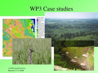 WP3 Case studies
