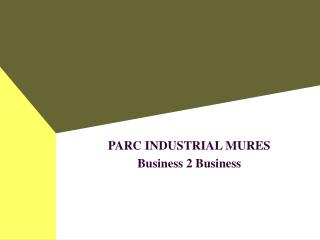 PARC INDUSTRIAL MURES  Business 2 Business
