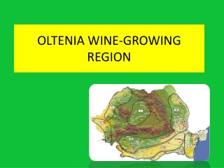 Oltenia  wine-growing region
