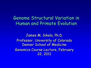 Genome Structural Variation in Human and Primate Evolution