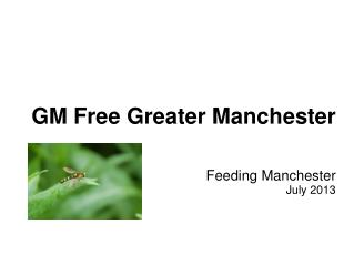 GM Free Greater Manchester Feeding Manchester July 2013