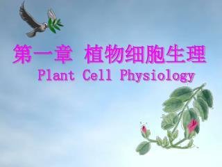 第一章 植物细胞生理 Plant Cell Physiology