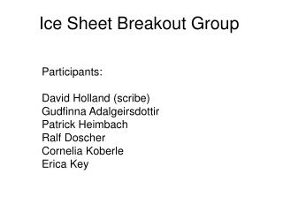 Ice Sheet Breakout Group