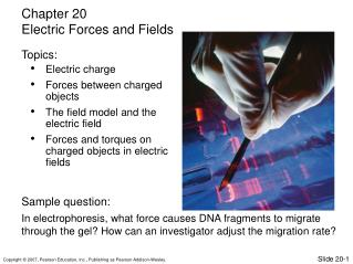 Electric charge Forces between charged objects The field model and the electric field