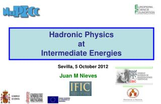Hadronic Physics  at Intermediate Energies