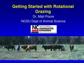 Getting Started with Rotational Grazing
