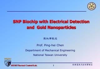 SNP Biochip with Electrical Detection and  Gold Nanoparticles