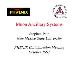Muon Ancillary Systems Stephen Pate New Mexico State University PHENIX Collaboration Meeting