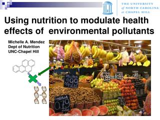 Using nutrition to modulate health effects of  environmental pollutants