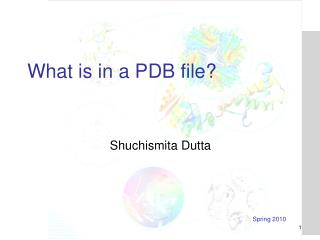 What is in a PDB file?