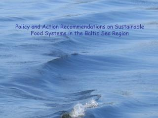 Policy and Action Recommendations on Sustainable Food Systems in the Baltic Sea Region