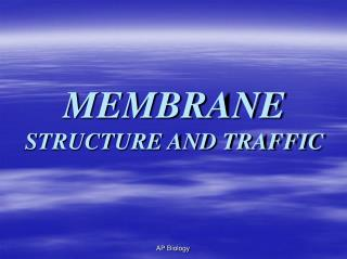 MEMBRANE  STRUCTURE AND TRAFFIC