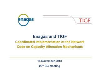 15 November 2013 20 th SG meeting