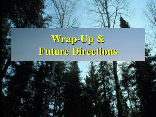 Wrap-Up & Future Directions