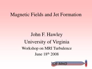Magnetic Fields and Jet Formation