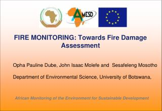 FIRE MONITORING: Towards Fire Damage Assessment