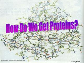 How Do We Get Proteins?