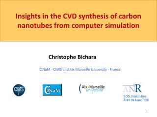 Insights in the CVD synthesis of carbon nanotubes from computer simulation