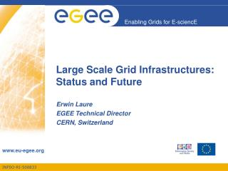 Large Scale Grid Infrastructures:  Status and Future
