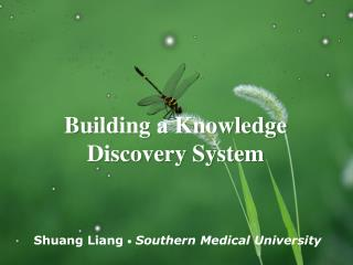Building a Knowledge Discovery System
